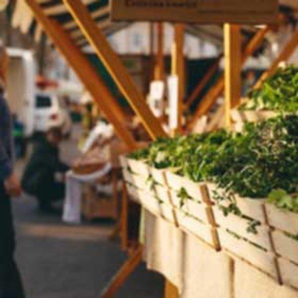 Posicionamiento en Marketplaces